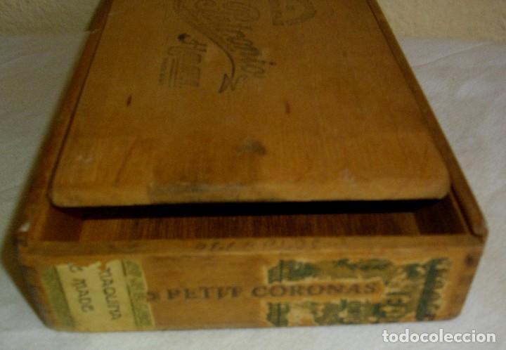 Cajas de Puros: CAJA DE PUROS HABANOS PETRONIO (VACIA) EPOCA PRE-REVOLUCION - Foto 4 - 110190395