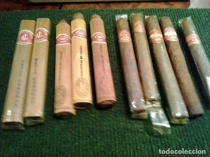 Cajas de Puros: Lote 10 puros Romeo y julieta ,Petit Coronas ,Troya Partagas Concha 1 Quintero - Foto 10 - 124846231