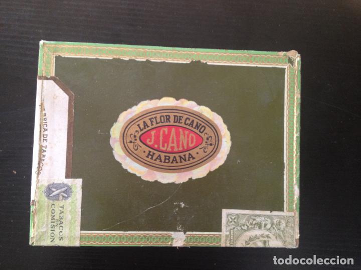 LA FLOR DE CANO HABANA (Coleccionismo - Objetos para Fumar - Cajas de Puros)