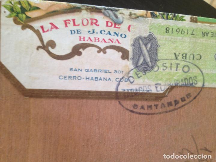 Cajas de Puros: LA FLOR DE CANO HABANA - Foto 6 - 130908144