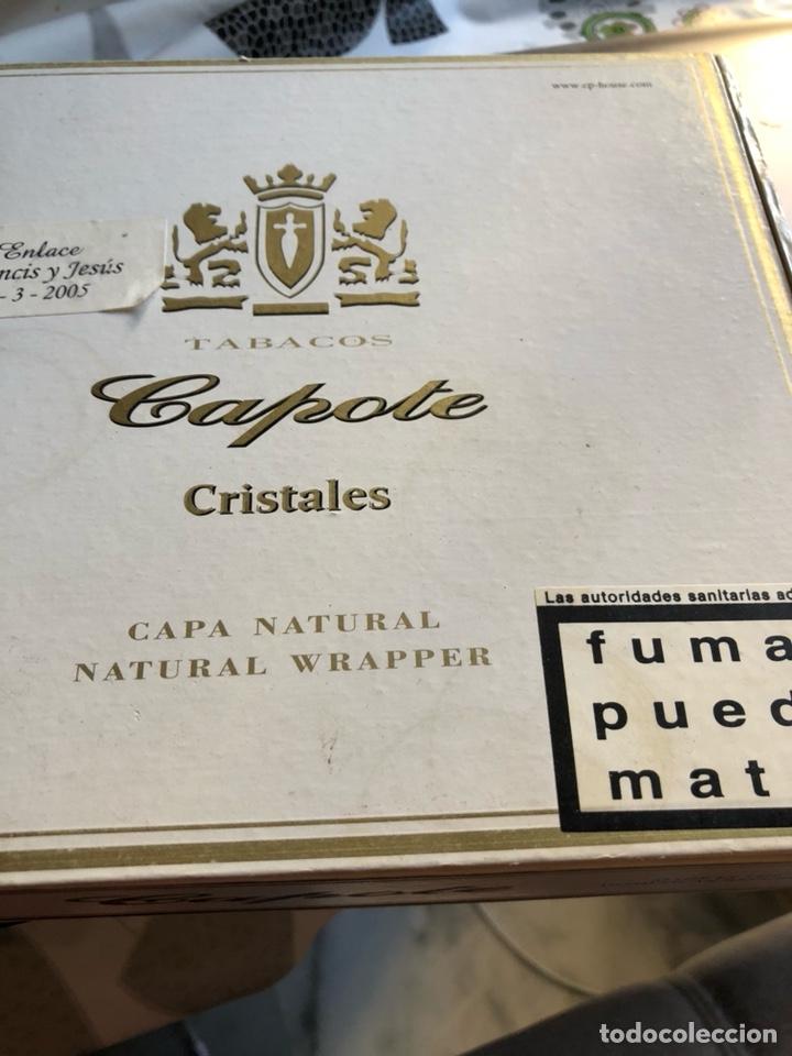 LOTE DE 9 PUROS CAPOTE (Coleccionismo - Objetos para Fumar - Cajas de Puros)