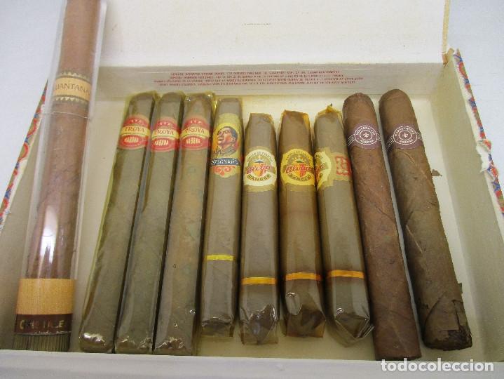 Cajas de Puros: caja de puros TROYA, MARTINEZ Y CIA, HABANA, CUBA, con varios puros TROYA, MONTECRISTO, ALVARO,... - Foto 3 - 136193440