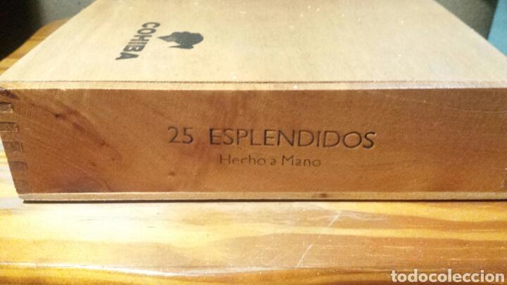 Cajas de Puros: Caja puros Cohiba - Foto 5 - 141111124