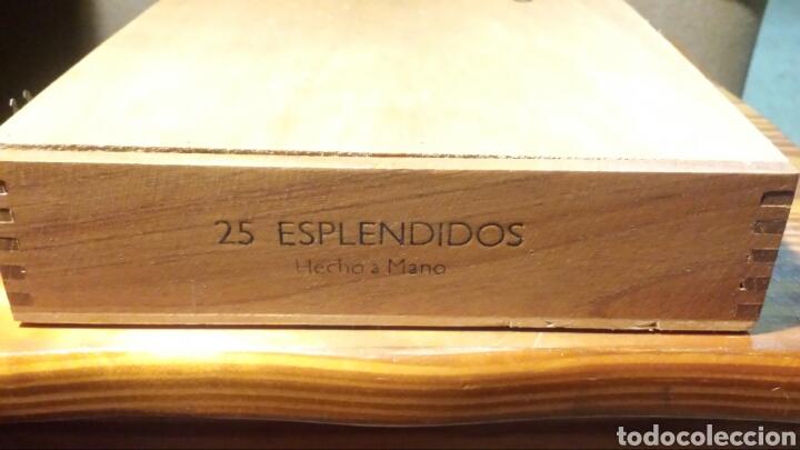 Cajas de Puros: Caja puros Cohiba - Foto 7 - 141111124