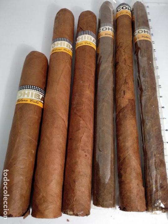 Cajas de Puros: Lote de 6 puros habanos cohiba havana Cuba habana - Foto 3 - 146684926