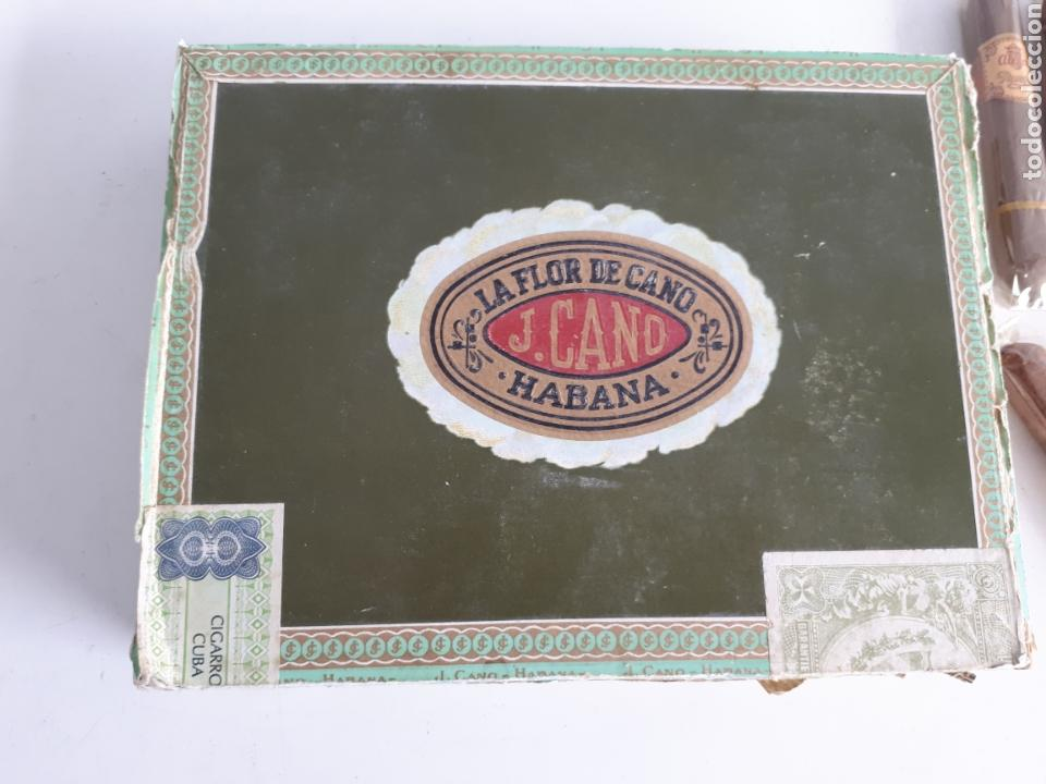 Cajas de Puros: Lote de 23 puros varias marcas, algunos cubanos más caja leer descripción - Foto 6 - 147699113