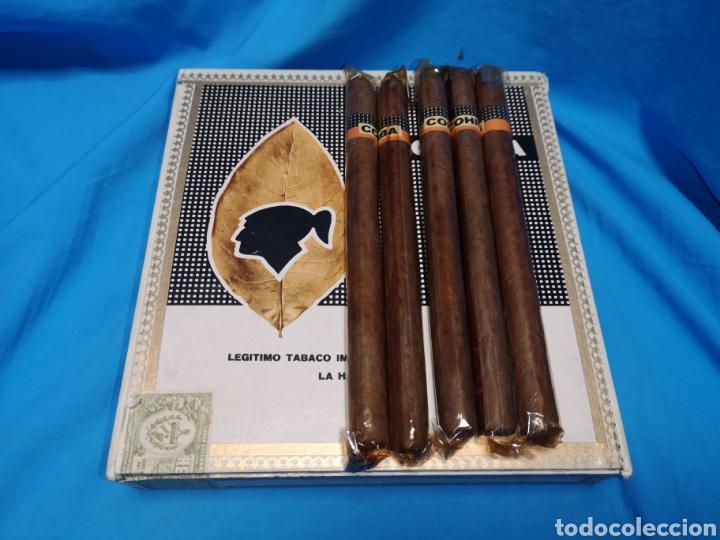 CAJA DE PUROS CON 5 LANCEROS COHÍBA HABANA HAVANA HABANOS CUBA (Coleccionismo - Objetos para Fumar - Cajas de Puros)