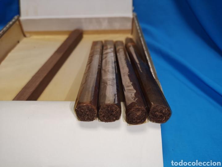 Cajas de Puros: Caja de puros con 4 cohíba lanceros Cuba habana Havana habanos - Foto 6 - 147760662