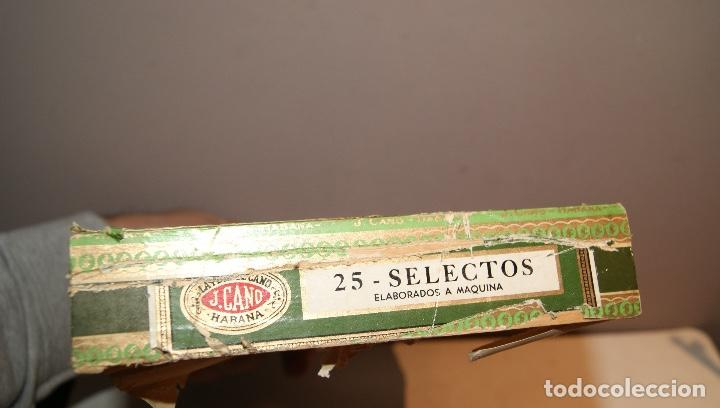 Cajas de Puros: ANTIGUA CAJA DE PUROS LA FLOR DE CANO CON 16 PUROS,BARATA VER FOTOS - Foto 3 - 147774790