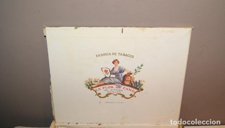 Cajas de Puros: ANTIGUA CAJA DE PUROS LA FLOR DE CANO CON 16 PUROS,BARATA VER FOTOS - Foto 4 - 147774790