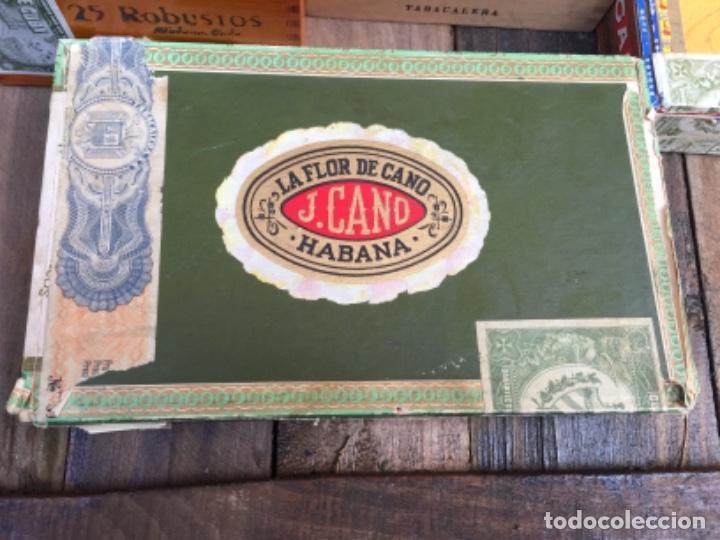 Cajas de Puros: Lote de diferentes cajas de puros - Foto 2 - 148021050