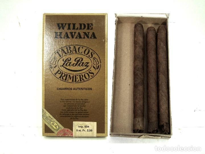 3X PUROS - WILDE HAVANA TABACOS LA PAZ -PRIMEROS- CAJA PAQUETE PURO TABACO HABANA CIGARROS (Coleccionismo - Objetos para Fumar - Cajas de Puros)