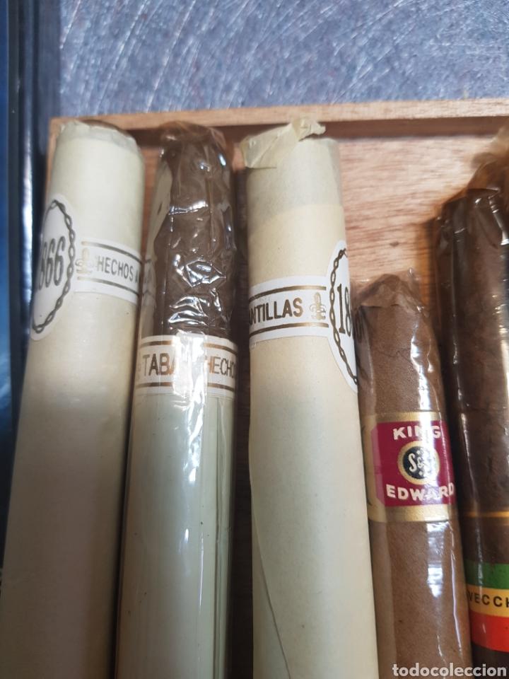 Cajas de Puros: Caja de Puros Churchill con 9 puros distintas marcas - Foto 4 - 148640797