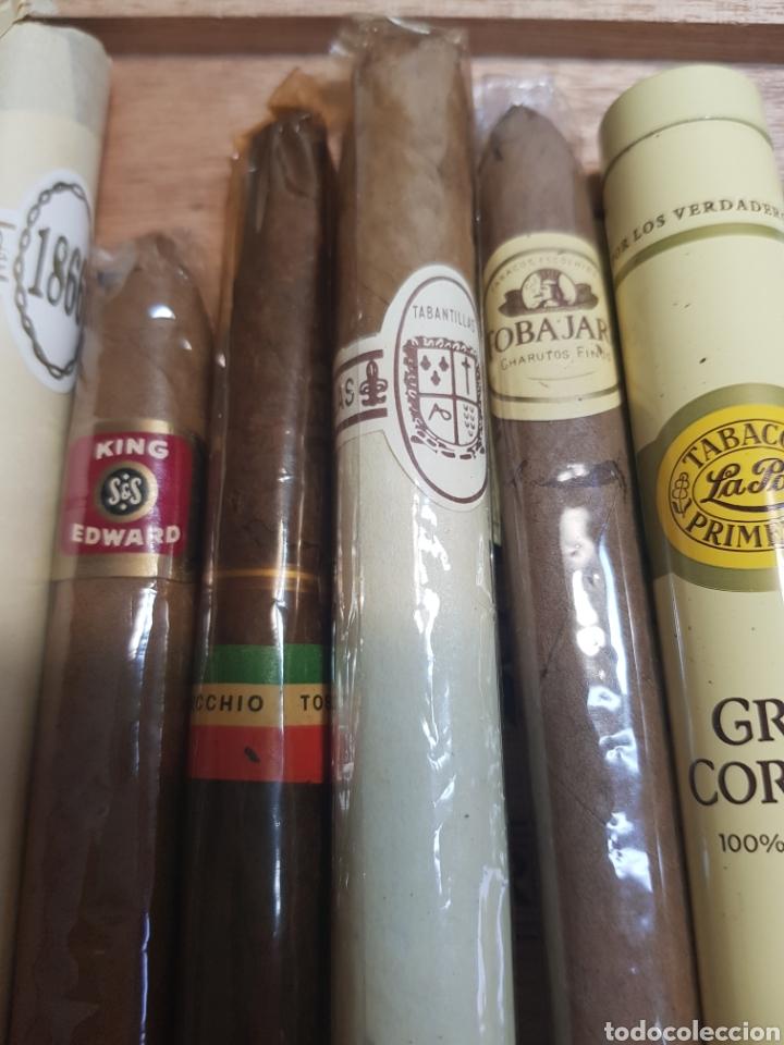 Cajas de Puros: Caja de Puros Churchill con 9 puros distintas marcas - Foto 5 - 148640797