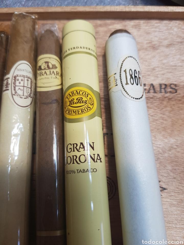 Cajas de Puros: Caja de Puros Churchill con 9 puros distintas marcas - Foto 6 - 148640797