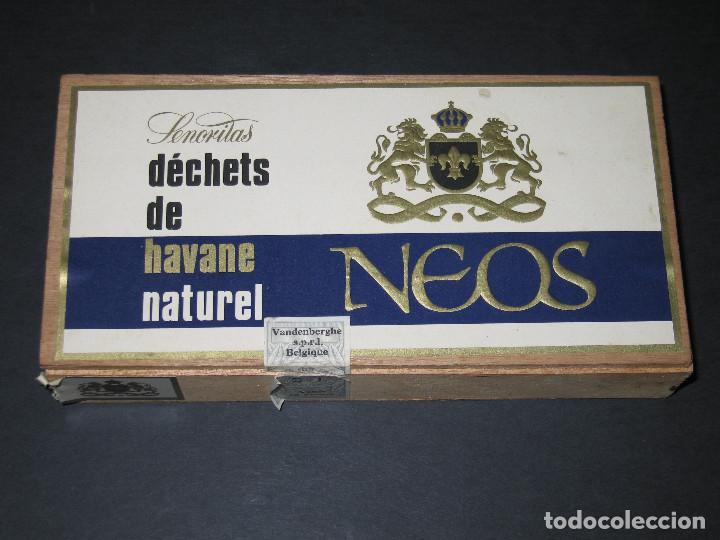 CAJA DE PUROS - NEOS (Coleccionismo - Objetos para Fumar - Cajas de Puros)