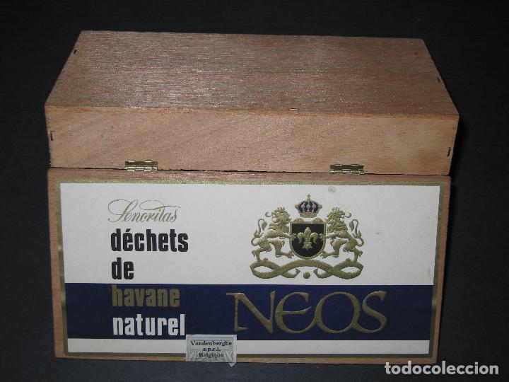 Cajas de Puros: CAJA DE PUROS - NEOS - Foto 4 - 150122906