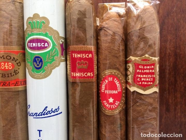 Cajas de Puros: lote 8 puros. AL CAPONE, VASCO DA GAMA, TABANTILLAS, ORMOND JUBILÉ, TENISCA, GLORIA PALMERA. - Foto 2 - 151586938