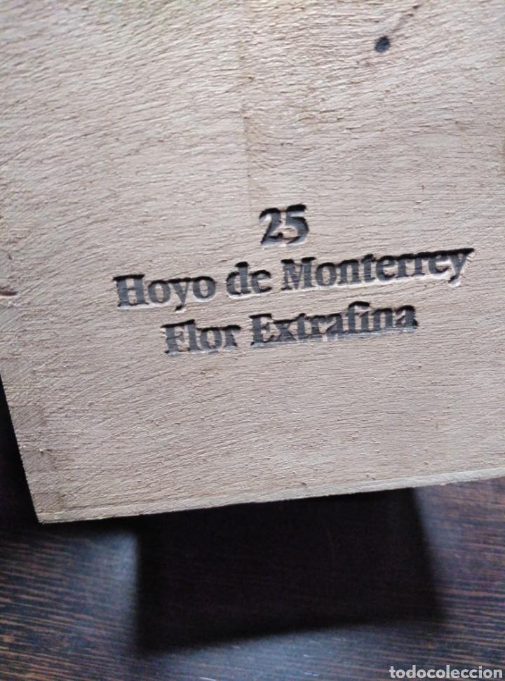 Cajas de Puros: Caja de puros vacia JOSÉ GENER-PETIT ROBUSTOS - Foto 4 - 153872045