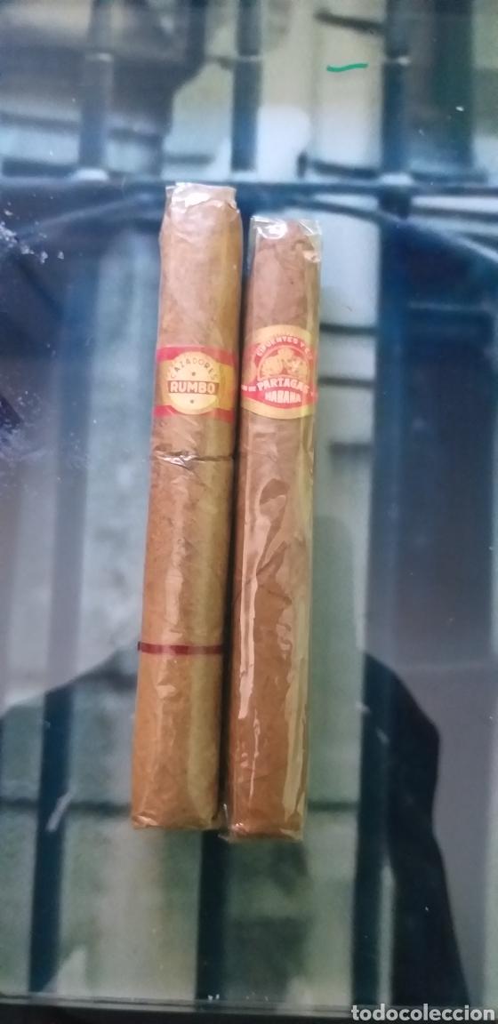 Cajas de Puros: Lote de antiguos puros varias marcas - Foto 5 - 162801162