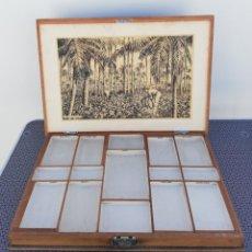 Cajas de Puros: CAJA CIGARROS/PUROS - MADERA. Lote 165203998
