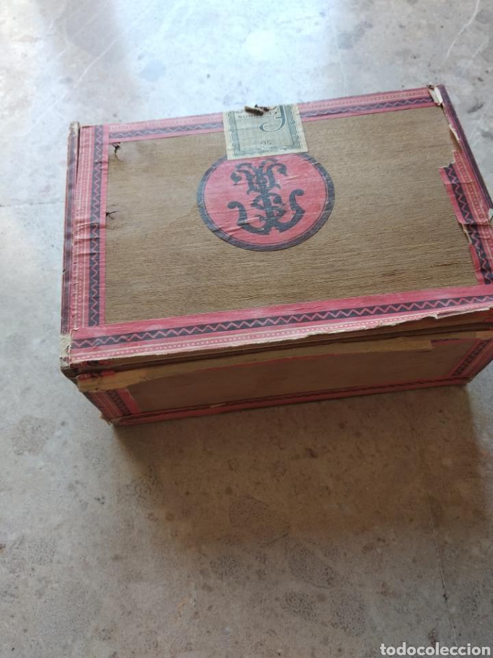 Cajas de Puros: Caja de puros Farias - Foto 7 - 166908373