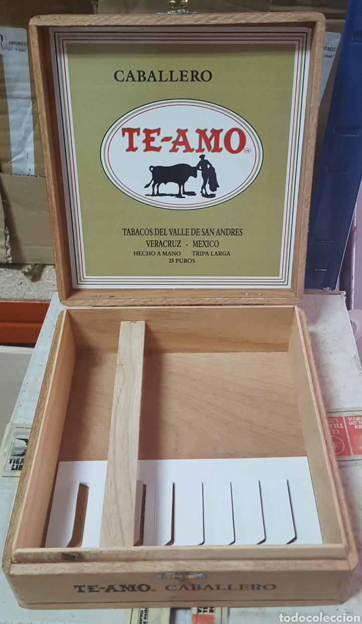 Cajas de Puros: CAJA DE PUROS VACIA TE-AMO CABALLERO VERACRUZ MEXICO - Foto 2 - 170473110