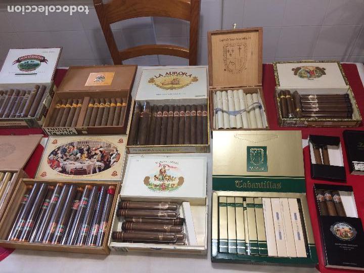 GRAN LOTE CAJAS DE PUROS - PROCEDEN DE ESTANCO - ¡ ¡ ¡ POR SÓLO 1.- EURO ! ! ! (Coleccionismo - Objetos para Fumar - Cajas de Puros)