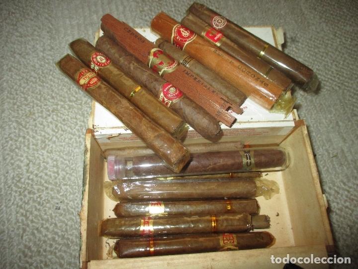 Cajas de Puros: Caja puros habanos vintage La Escepción de José Gener, con 8 habanos de diversas marcas y 11 puros - Foto 2 - 170955318