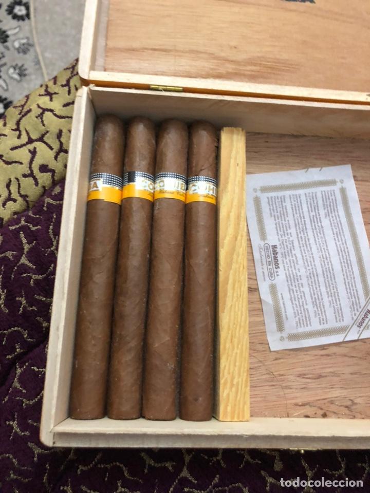 Cajas de Puros: 4 puros habanos cohiba en su caja original - Foto 2 - 172032940