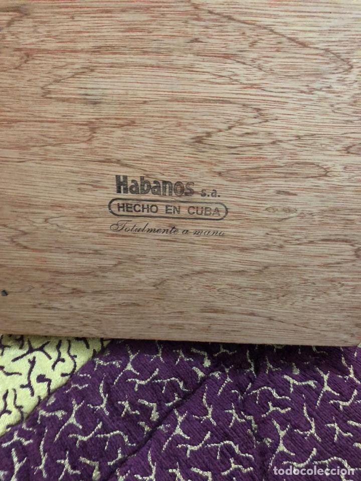 Cajas de Puros: 4 puros habanos cohiba en su caja original - Foto 5 - 172032940