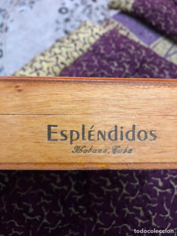 Cajas de Puros: 4 puros habanos cohiba en su caja original - Foto 6 - 172032940