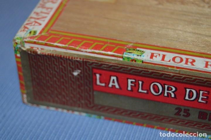Cajas de Puros: LA FLOR DE LA ISABELA / 25 Brevas - Antigua caja precintada, sin abrir - De colección - ¡Mira! - Foto 3 - 173086177