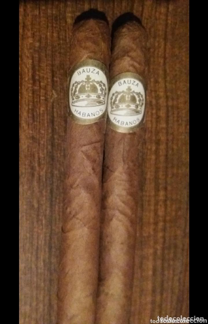 ÚNICOS PUROS HABANOS BAUZÁ AÑOS 70 OBJETO DE COLECCION 16CM BUEN ESTADO ÚNICOS EN VENTA (Coleccionismo - Objetos para Fumar - Cajas de Puros)