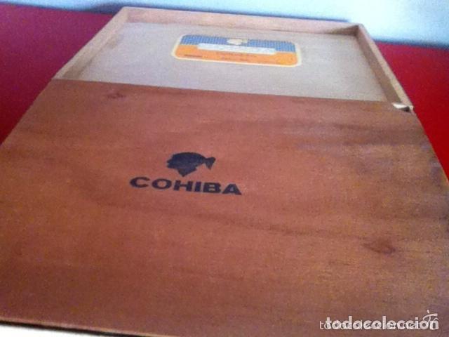 Cajas de Puros: COHIBA ESPLÉNDIDOS - CAJA 23 Unidades- PUROS HABANOS (17,8 cm) - Foto 6 - 173927467