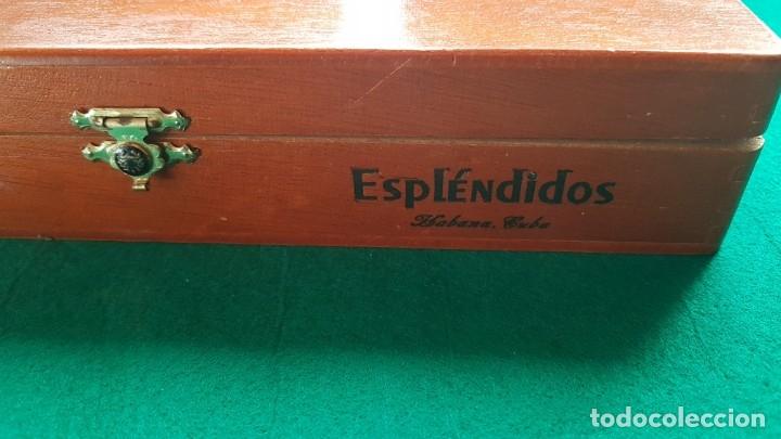 Cajas de Puros: CAJA PUROS HABANOS COHIBA ESPLÉNDIDOS CONSERVA HUMIDOR Y SEPARADOR - Foto 3 - 173929687