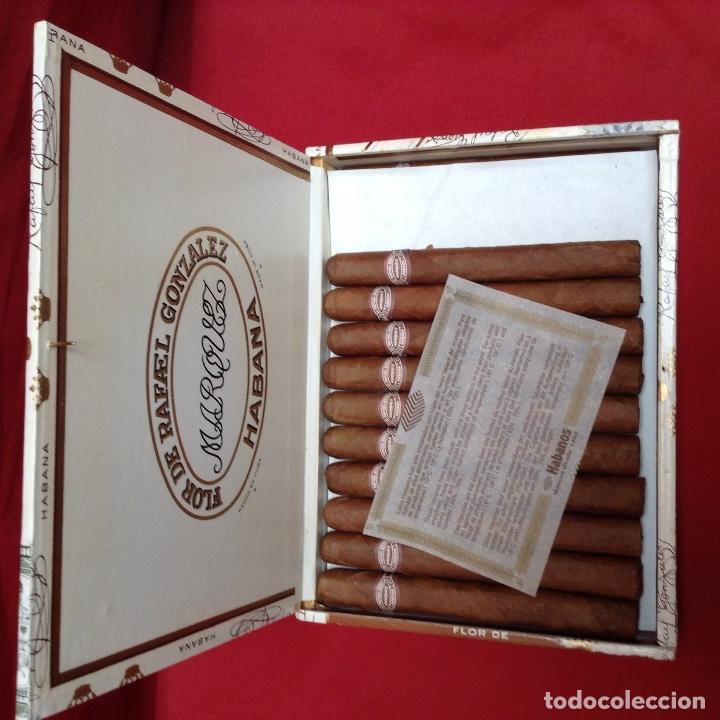 Cajas de Puros: Caja de puros , con 23 puros panetelas extras , año 2000, Rafael González Márquez objeto de colec - Foto 2 - 174012507