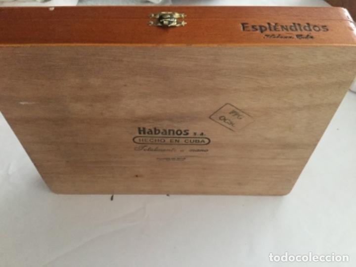 Cajas de Puros: Caja de puros Cohiba contiene tres puros Cohiba, en perfecto estado - Foto 4 - 174998908