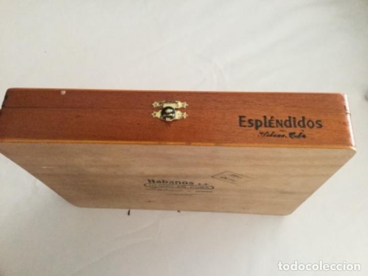 Cajas de Puros: Caja de puros Cohiba contiene tres puros Cohiba, en perfecto estado - Foto 5 - 174998908