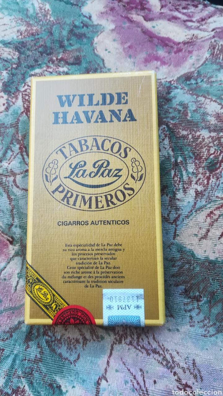 CAJA CON 5 PUROS, WILDER HAVANA (Coleccionismo - Objetos para Fumar - Cajas de Puros)