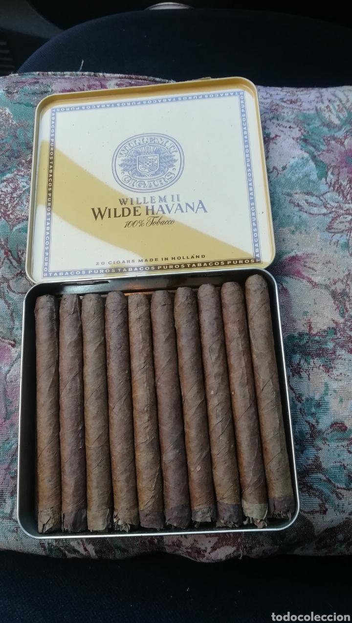 Cajas de Puros: Caja de puros, Willem II, Wilder Havana - Foto 2 - 175025158