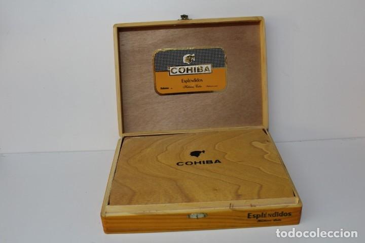 Cajas de Puros: CAJA DE PUROS COMPLETA - COHIBA ESPLENDIDOS - Foto 3 - 175110905