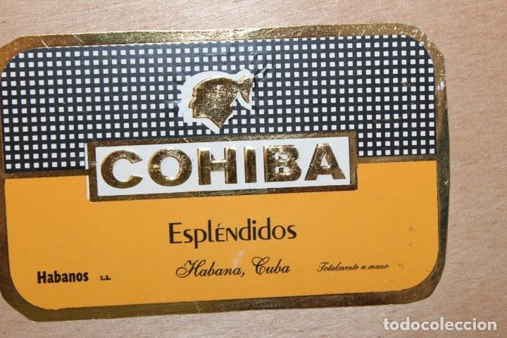Cajas de Puros: CAJA DE PUROS COMPLETA - COHIBA ESPLENDIDOS - Foto 6 - 175110905