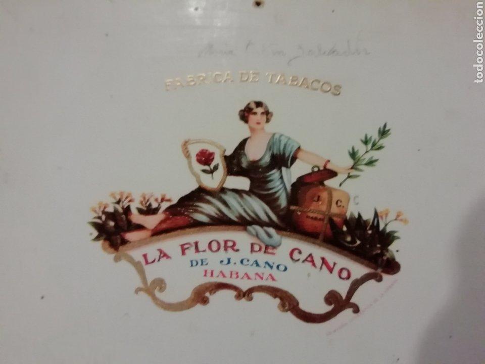 Cajas de Puros: Antigua caja de puros de havana cuba la flor de cano años 50 aproximadamente - Foto 6 - 180141457