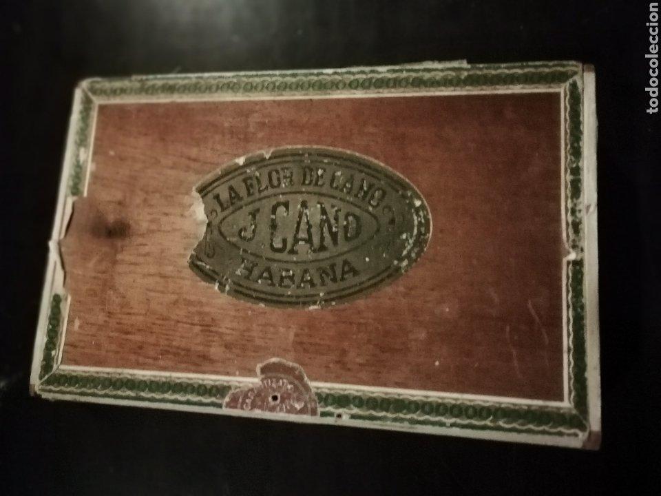 ANTIGUA CAJA DE PUROS DE HAVANA CUBA LA FLOR DE CANO AÑOS 50 APROXIMADAMENTE (Coleccionismo - Objetos para Fumar - Cajas de Puros)