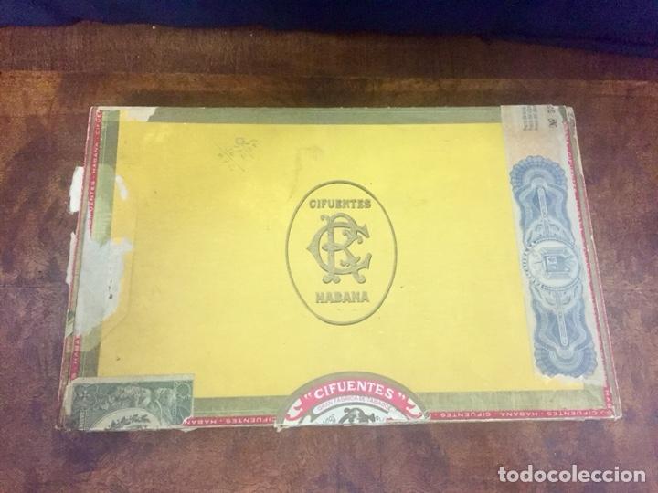 CAJA DE PUROS HABANOS CIFUENTES, 2 ALTEZAS Y 4 CRISTALTUBOS. (Coleccionismo - Objetos para Fumar - Cajas de Puros)