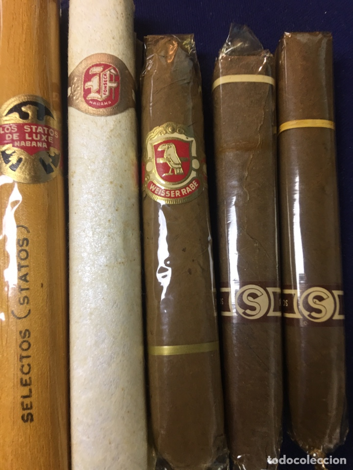LOTE DE 5 PUROS - VARIAS MARCAS (Coleccionismo - Objetos para Fumar - Cajas de Puros)