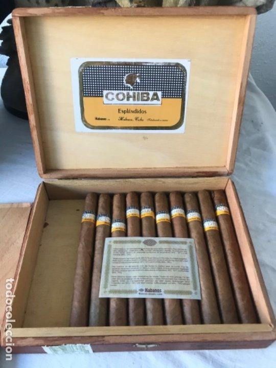 CAJA DE PUROS COHIBA ESPLENDIDOS 9 UNIDADES. (Coleccionismo - Objetos para Fumar - Cajas de Puros)