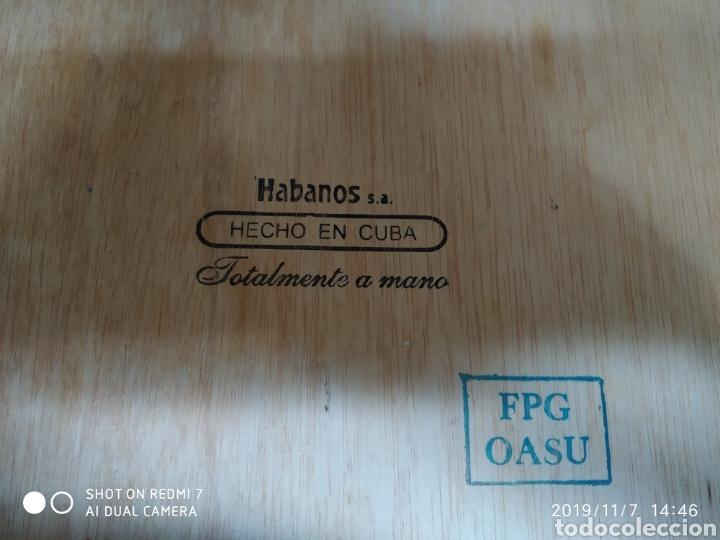 Cajas de Puros: Caja puros Cohiba - Foto 8 - 141111124