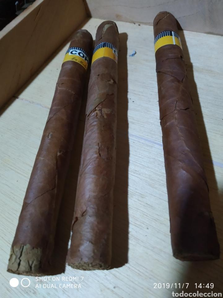 Cajas de Puros: Caja puros Cohiba - Foto 9 - 141111124